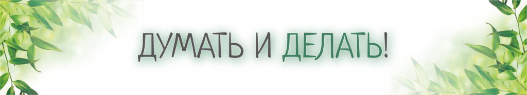"""Предыстория создания проекта ЭКО-Здравницы """"РодаСвет"""""""